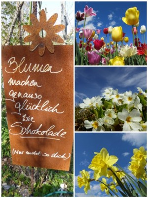 Blumen - Collage.jpg